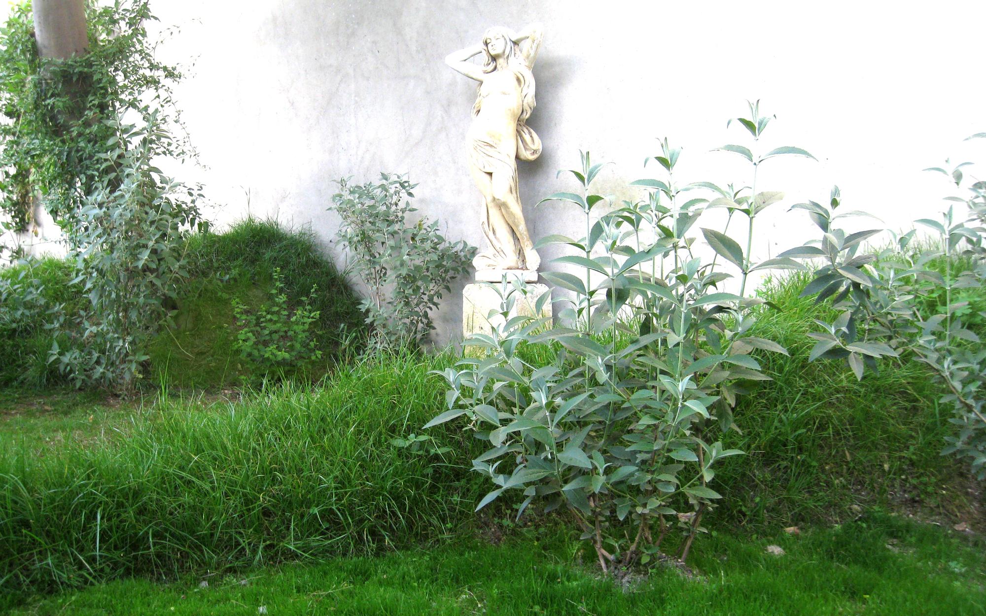 Hélène Soulier paysagiste Bordeaux, enseignante Ecole Nationale Supérieure d'Architecture et du Paysage de Bordeaux, ensapBx, jardins, châteaux, installations, workshops, jardin projet privé Billon